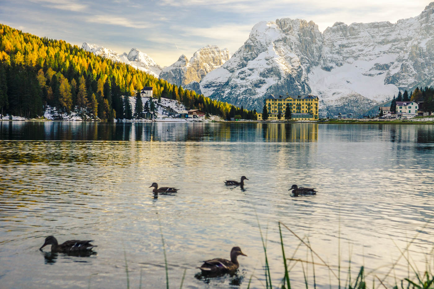 Dolomites - Lago di Misurina