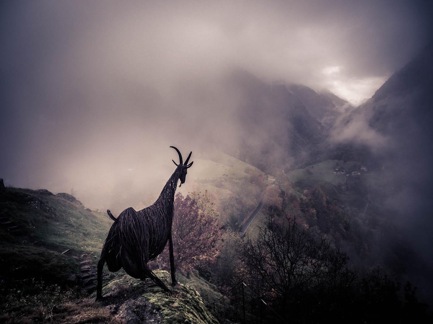 Geis im Nebel