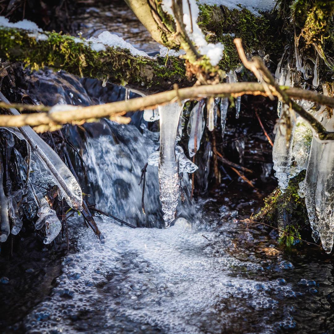 Winter im Saarland