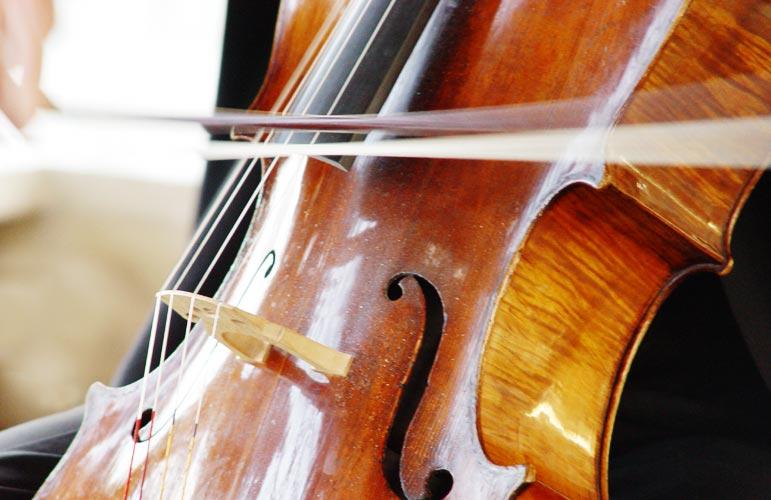 http://www.designladen.com/musikinstrumente/source/image/cello-dsc02101.jpg