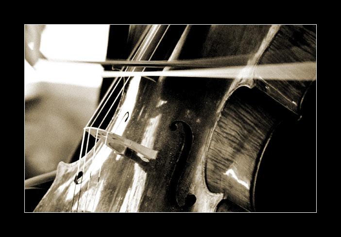 http://www.designladen.com/orchester/image/cello.dsc02101-korn.jpg